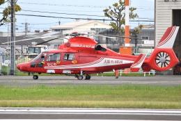 jun☆さんが、八尾空港で撮影した大阪市消防航空隊 AS365N3 Dauphin 2の航空フォト(飛行機 写真・画像)