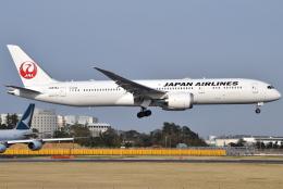 jun☆さんが、成田国際空港で撮影した日本航空 787-9の航空フォト(飛行機 写真・画像)