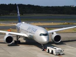 DVDさんが、成田国際空港で撮影したベトナム航空 A350-941の航空フォト(飛行機 写真・画像)