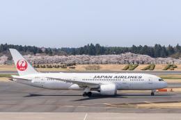 航空フォト:JA821J 日本航空 787-8 Dreamliner