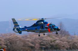 Nao0407さんが、松本空港で撮影した長野県警察 AS365N3 Dauphin 2の航空フォト(飛行機 写真・画像)