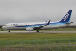 MOR1(新アカウント)さんが、佐賀空港で撮影した全日空 737-881の航空フォト(飛行機 写真・画像)