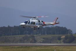 Judy1009さんが、静岡空港で撮影した静岡エアコミュータ AW109SPの航空フォト(飛行機 写真・画像)