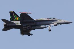 Talon.Kさんが、オシアナ海軍航空基地アポロソーセックフィールドで撮影したアメリカ海軍 F/A-18C Hornetの航空フォト(飛行機 写真・画像)
