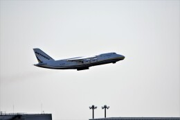 MSN/PFさんが、中部国際空港で撮影したアントノフ・エアラインズ An-124 Ruslanの航空フォト(飛行機 写真・画像)
