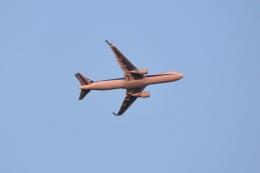 md11jbirdさんが、伊丹空港で撮影した全日空 767-381/ERの航空フォト(飛行機 写真・画像)
