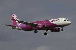 Sharp Fukudaさんが、成田国際空港で撮影したピーチ A320-214の航空フォト(飛行機 写真・画像)