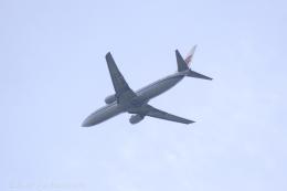 kazucamさんが、広島空港で撮影した中国国際航空 737-86Nの航空フォト(飛行機 写真・画像)