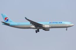 mameshibaさんが、成田国際空港で撮影した大韓航空 A330-323Xの航空フォト(飛行機 写真・画像)