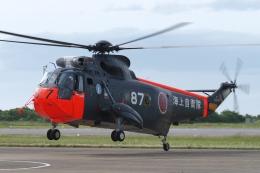 木人さんが、館山航空基地で撮影した海上自衛隊 S-61A-1 Sea Kingの航空フォト(飛行機 写真・画像)
