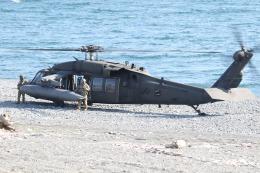 ゴンタさんが、静岡県沼津市で撮影したアメリカ陸軍 UH-60L Black Hawk (S-70A)の航空フォト(飛行機 写真・画像)