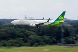 K.Sさんが、成田国際空港で撮影した春秋航空日本 737-8ALの航空フォト(飛行機 写真・画像)