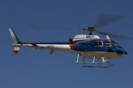 redarrowさんが、群馬ヘリポートで撮影したアカギヘリコプター AS350B1 Ecureuilの航空フォト(飛行機 写真・画像)