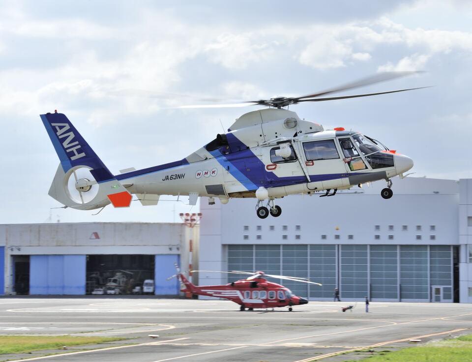 パンサーRP21さんのオールニッポンヘリコプター Aerospatiale SA365/AS365/565 Dauphin 2 (JA63NH) 航空フォト