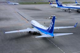 ぐっちーさんが、那覇空港で撮影した全日空 737-881の航空フォト(飛行機 写真・画像)