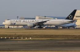 メンチカツさんが、成田国際空港で撮影した全日空 777-381/ERの航空フォト(飛行機 写真・画像)