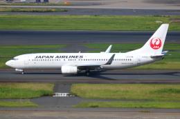 ▲®さんが、羽田空港で撮影した日本航空 737-846の航空フォト(飛行機 写真・画像)