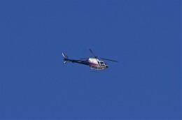 mild lifeさんが、八尾空港で撮影したノエビア AS350B3 Ecureuilの航空フォト(飛行機 写真・画像)