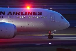 リゾッチャ(紫)さんが、成田国際空港で撮影した日本航空 787-9の航空フォト(飛行機 写真・画像)