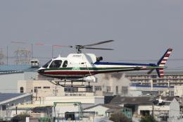 キイロイトリさんが、八尾空港で撮影したエクセル航空 AS350B2 Ecureuilの航空フォト(飛行機 写真・画像)