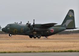こつぽんさんが、松島基地で撮影した航空自衛隊の航空フォト(飛行機 写真・画像)