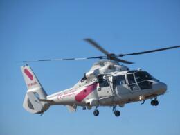 チダ.ニックさんが、静岡ヘリポートで撮影した東邦航空 AS365N2 Dauphin 2の航空フォト(飛行機 写真・画像)