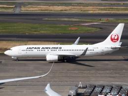 航空フォト:JA305J 日本航空 737-800