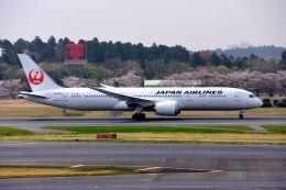 まいけるさんが、成田国際空港で撮影した日本航空 787-9の航空フォト(飛行機 写真・画像)