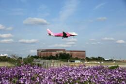 flyskyさんが、成田国際空港で撮影したピーチ A320-214の航空フォト(飛行機 写真・画像)