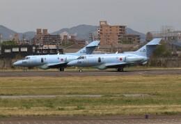 jp arrowさんが、名古屋飛行場で撮影した航空自衛隊 U-125A(Hawker 800)の航空フォト(飛行機 写真・画像)