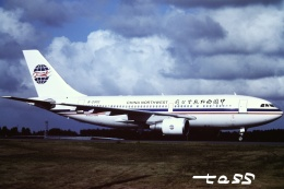 tassさんが、成田国際空港で撮影した中国西北航空 A310-222の航空フォト(飛行機 写真・画像)