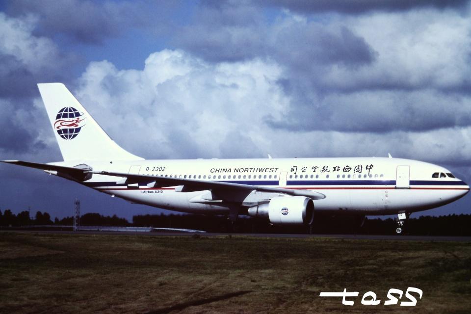 tassさんの中国西北航空 Airbus A310-200 (B-2302) 航空フォト