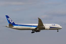 inyoさんが、成田国際空港で撮影した全日空 787-9の航空フォト(飛行機 写真・画像)
