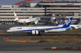 KOKI_ANA-Brussels767さんが、羽田空港で撮影した全日空 787-9の航空フォト(飛行機 写真・画像)