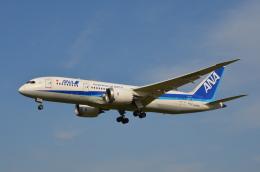 Qualiflyerさんが、福岡空港で撮影した全日空 787-8 Dreamlinerの航空フォト(飛行機 写真・画像)