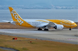 amagoさんが、関西国際空港で撮影したスクート 787-8 Dreamlinerの航空フォト(飛行機 写真・画像)