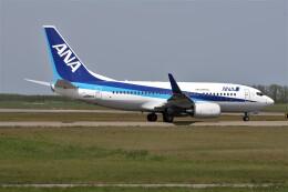 もぐ3さんが、新潟空港で撮影した全日空 737-781の航空フォト(飛行機 写真・画像)
