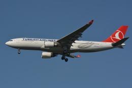 Deepさんが、成田国際空港で撮影したターキッシュ・エアラインズ A330-203の航空フォト(飛行機 写真・画像)