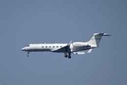 レドームさんが、羽田空港で撮影したSpringfield air G-Vの航空フォト(飛行機 写真・画像)