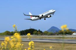 くれないさんが、高松空港で撮影した日本航空 737-846の航空フォト(飛行機 写真・画像)