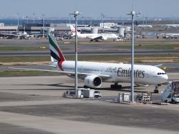 FT51ANさんが、羽田空港で撮影したエミレーツ航空 777-31H/ERの航空フォト(飛行機 写真・画像)