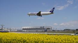 IMP.TIさんが、成田国際空港で撮影した全日空 767-381/ER(BCF)の航空フォト(飛行機 写真・画像)