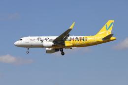 マーサさんが、成田国際空港で撮影したピーチ A320-214の航空フォト(飛行機 写真・画像)