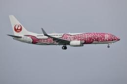 NIKEさんが、那覇空港で撮影した日本トランスオーシャン航空 737-8Q3の航空フォト(飛行機 写真・画像)
