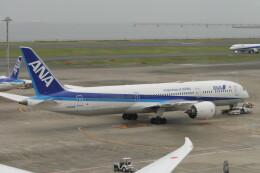 KKiSMさんが、羽田空港で撮影した全日空 787-9の航空フォト(飛行機 写真・画像)