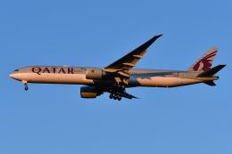 Deepさんが、成田国際空港で撮影したカタール航空 777-3DZ/ERの航空フォト(飛行機 写真・画像)