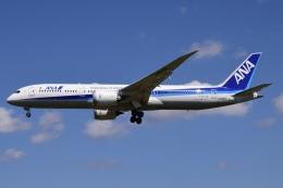 Timothyさんが、成田国際空港で撮影した全日空 787-9の航空フォト(飛行機 写真・画像)