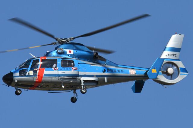 ほてるやんきーさんが、名古屋飛行場で撮影した静岡県警察 AS365N1 Dauphin 2の航空フォト(飛行機 写真・画像)