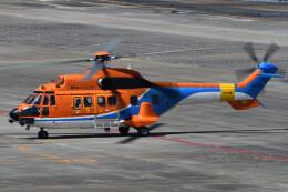ほてるやんきーさんが、名古屋飛行場で撮影した新日本ヘリコプター AS332L1 Super Pumaの航空フォト(飛行機 写真・画像)