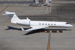 =JAかみんD=さんが、羽田空港で撮影したSpringfield Air G-Vの航空フォト(飛行機 写真・画像)